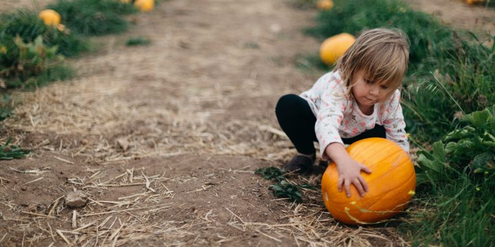 5 Ways to Let Your Little One Help Decorate This Halloween
